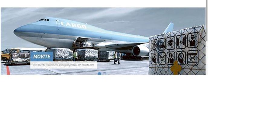 movite, movite wings, cargo